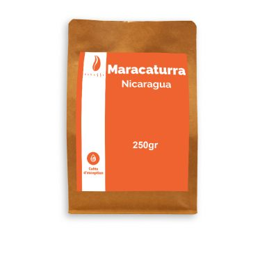Anbassa-artisan-torrefacteur-exception-maracaturra-nicaragua