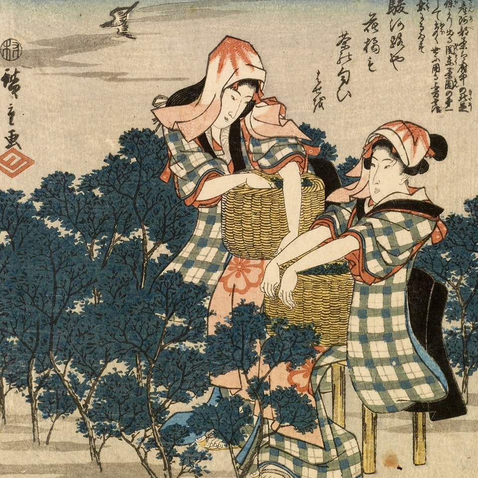 Anbassa-artisan-torrefacteur-breve-histoire-du-the-tea-Ibaya-Kyubei-Tokaido-gojusan-tsui-min