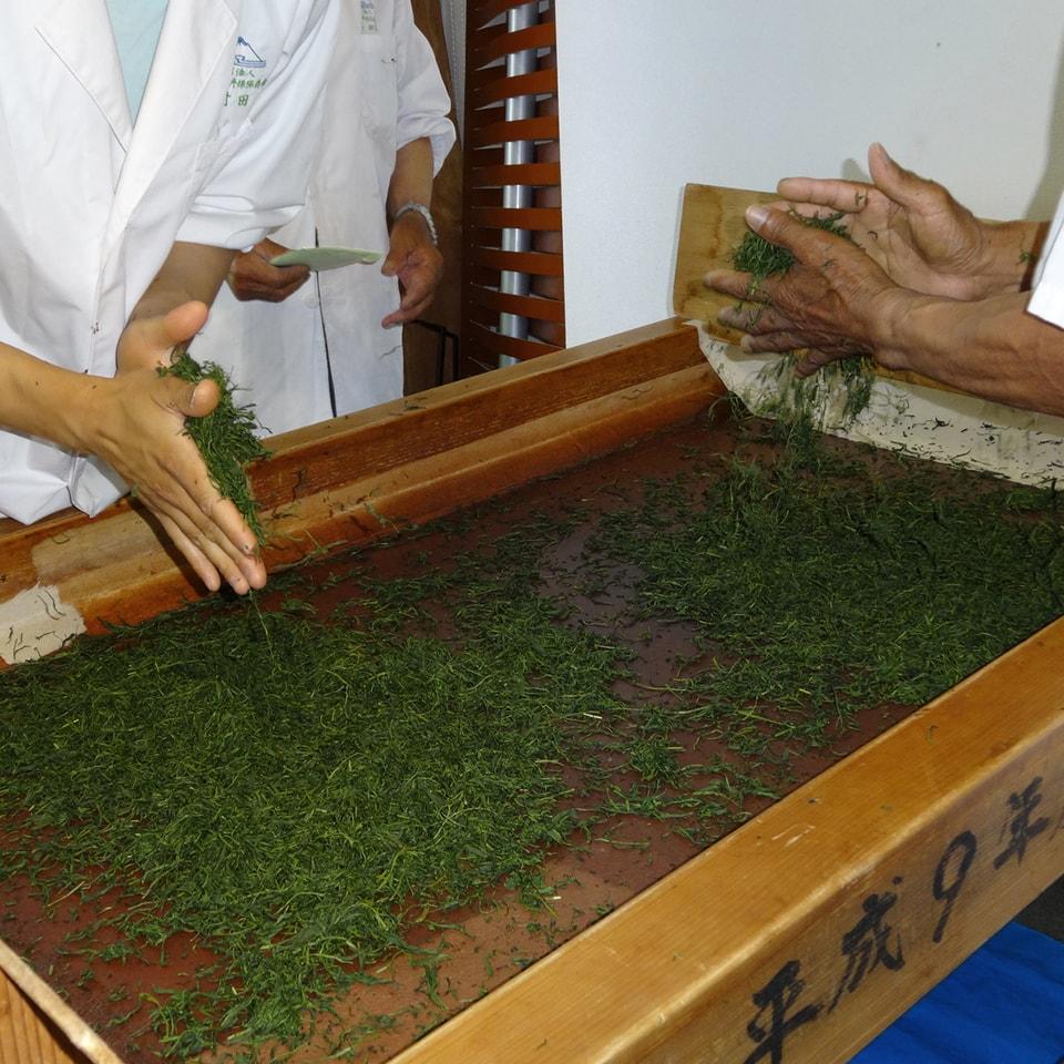 Anbassa-artisan-torrefacteur-different-type-de-the-Processing-green-tea-min