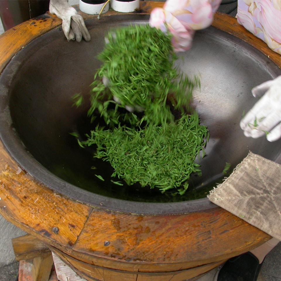 Anbassa-artisan-torrefacteur-different-type-de-the-Stir-frying-Xi-Hu-Longjing-min