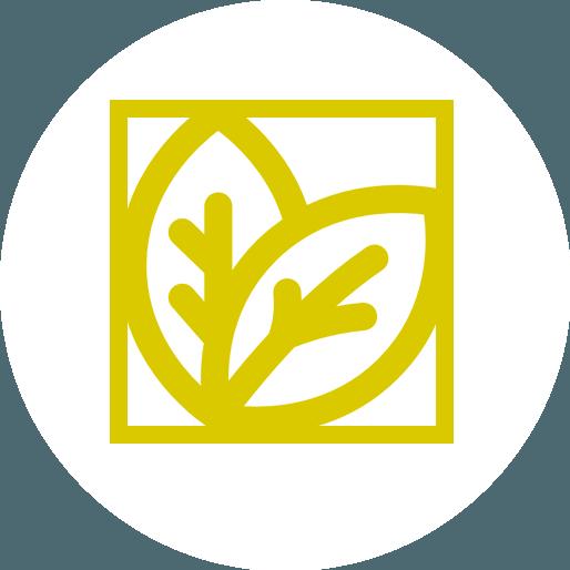 Anbassa-artisan-torrefacteur-infusion-vector
