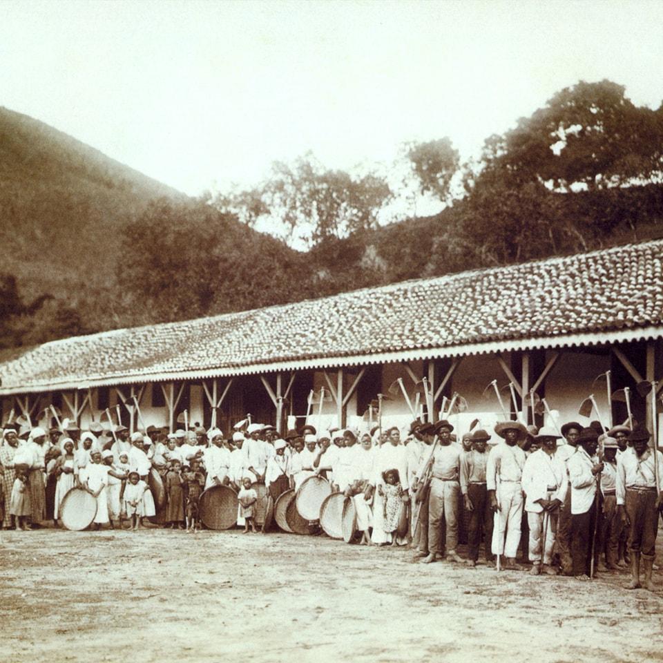 Anbassa-artisan-torrefacteur-les-arabicas-Ferme-cafe-Bresil-en-1885-min