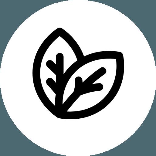 Anbassa-artisan-torrefacteur-thes-noir-nature-vector
