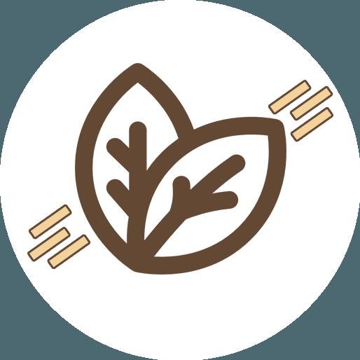 Anbassa-artisan-torrefacteur-thes-pu-erh-vector-2
