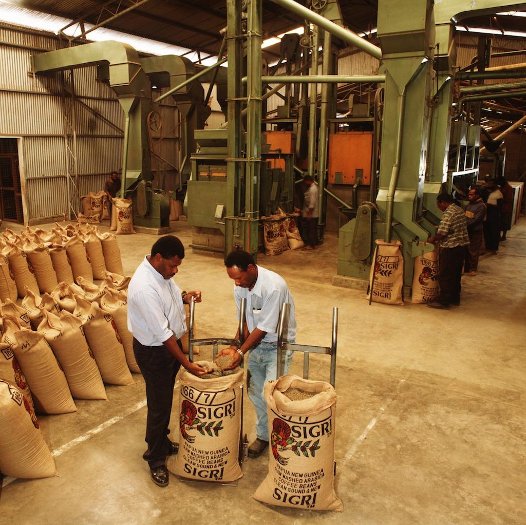 Anbassa-artisan-torrefacteur-cafe-nouvelle-guinée-sigri-plantation-1