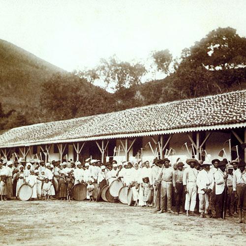 Anbassa Artisan Torrefacteur Les Arabicas Ferme Cafe Bresil En 1885 1