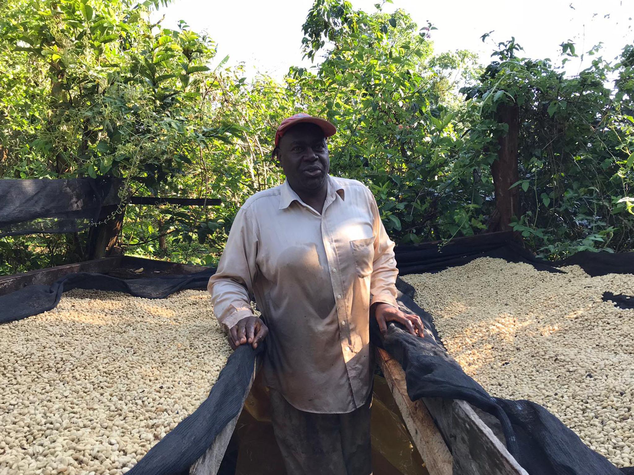 Anbassa Artisan Torrefacteur Cafe Grands Terroirs Nyeri Mbari Kenya Img 3